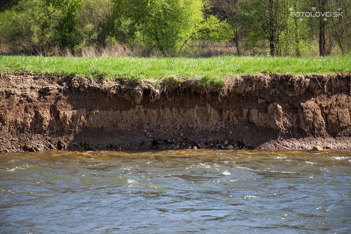 Kolmé brehy riek s hlinenými stenami  sú ideálne pre hniezdenie rybárika. Prevísajúca vegetácia a korene chránia hniezdnu noru pred predátormi.
