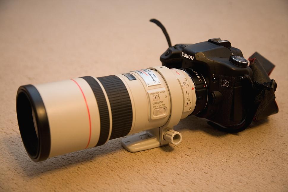 Canon EOS 50D + Kenko TELEPLUS PRO 300 AF 1.4X DGX + Canon EF 300/4L IS USM